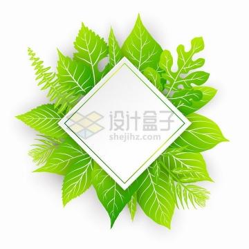绿色树叶装饰的菱形边框文本框标题框png图片免抠矢量素材