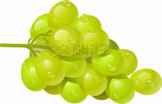 一串青葡萄png图片素材