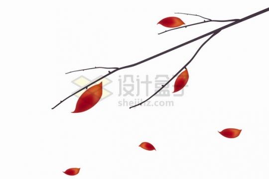 秋天枝头上仅存的几片红色树叶枯叶png图片素材