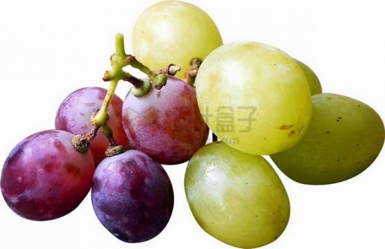 几颗紫色和青葡萄png图片素材