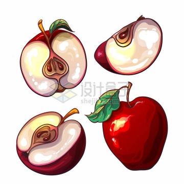 切块的红苹果美味水果彩绘插画png图片免抠矢量素材