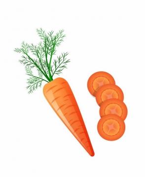 一根胡萝卜和切片的胡萝卜横切面美味蔬菜png图片免抠ai矢量素材