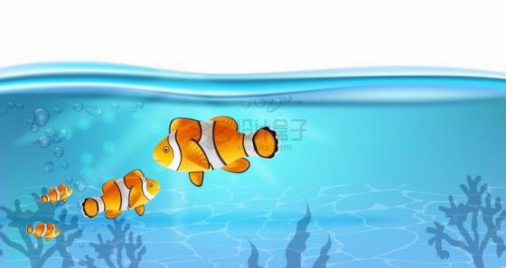 蔚蓝色的海水下面小丑鱼海底风光png图片免抠矢量素材