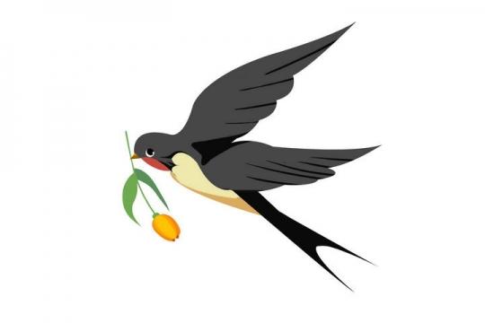 一只嘴上叼着一朵花的燕子图片免抠素材