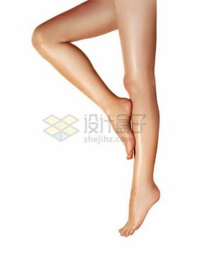 笔直的美腿png免抠图片素材