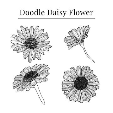 4款手绘线条风格菊花花朵花卉图片免抠矢量素材