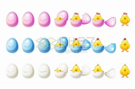 粉红色蓝色白色鸡蛋和孵出的小黄鸡png图片素材