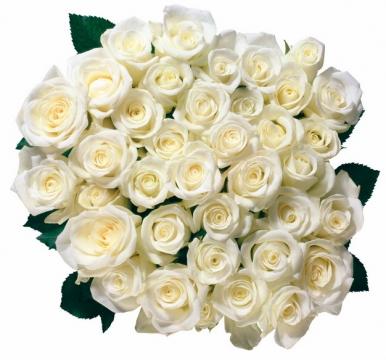 一大捧鲜花99朵白玫瑰767438png图片素材