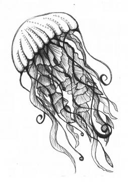 冥河水母手绘插画676366png图片素材
