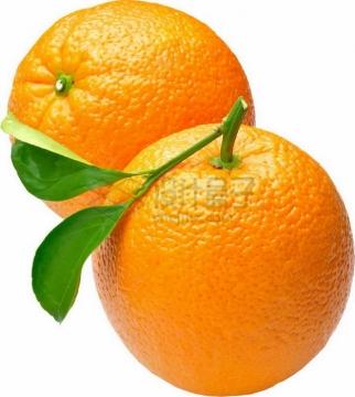 两颗完整的橙子赣南脐橙png图片素材