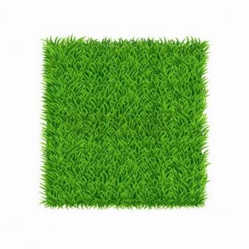 青草组成的草坪方格标题框文本框png图片免抠矢量素材