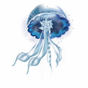 蓝紫色的赤月水母海蜇插画938641png图片素材