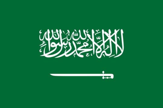 标准版沙特阿拉伯国旗图片素材