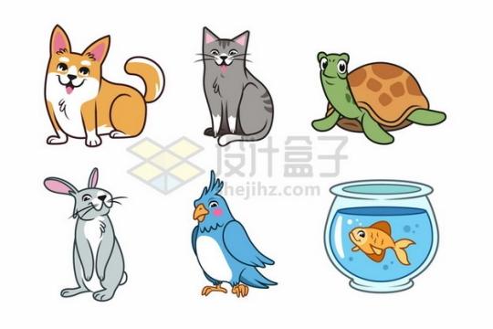 短腿柯基犬猫咪乌龟兔子鹦鹉金鱼等卡通宠物动物593908png矢量图片素材
