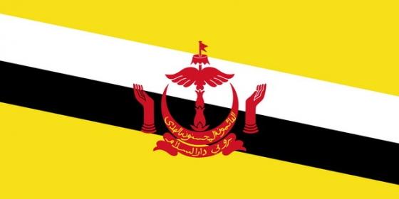 标准版文莱国旗图片素材