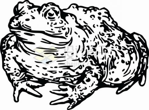 黑色手绘蟾蜍癞蛤蟆png图片素材