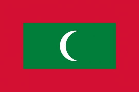 标准版马尔代夫国旗图片素材