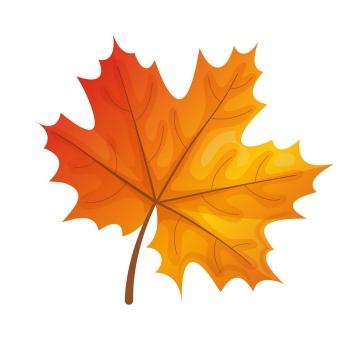 秋天发黄的枫叶免抠PNG图片素材