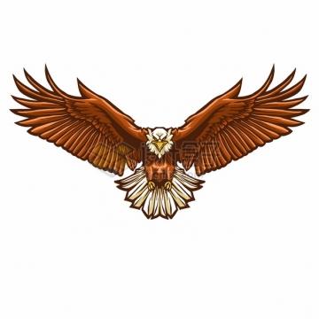 迎面扑来的展翅雄鹰老鹰527653png图片素材
