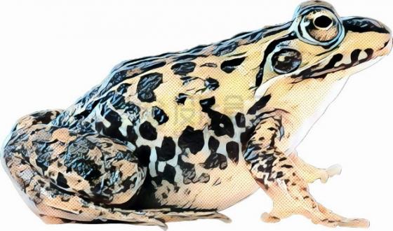彩绘风格青蛙黑斑蛙png图片素材