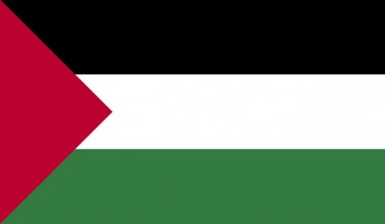 标准版巴勒斯坦国旗图片素材