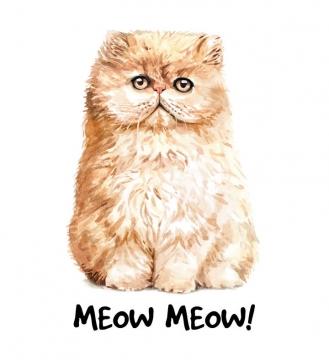 彩色手绘油画风格波斯猫猫咪图片宠物免抠素材
