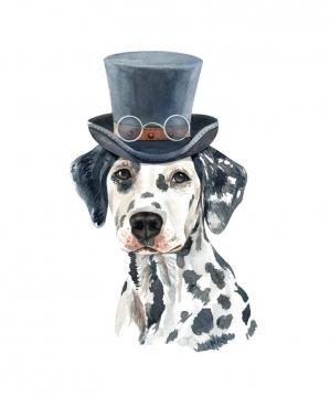 彩色手绘油画风格戴帽子的斑点狗宠物狗图片免抠素材