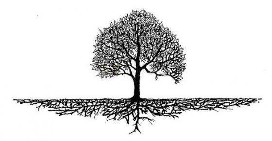 庞大根系的大树剪影png免抠图片素材