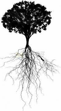 错综复杂的树根和大树剪影png免抠图片素材