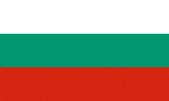 标准版保加利亚国旗图片素材