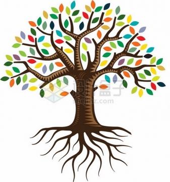带树根的大树长满了彩色树叶png免抠图片素材